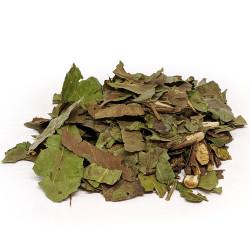 Chá Verde Folhas Granel